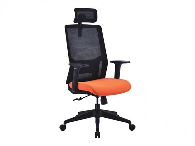 C65101-黑橘
